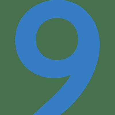 P9-Icon